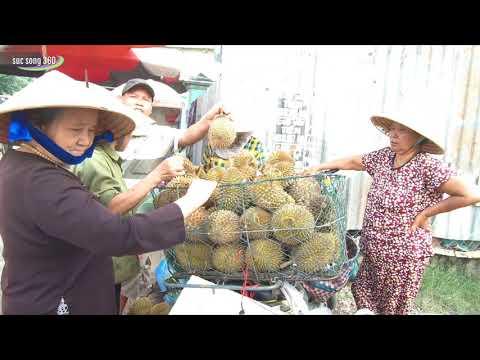 SÀI GÒN #45: Chợ tự phát VĨNH LỘC B (Bình Chánh, TPHCM) | Vinh Loc B market