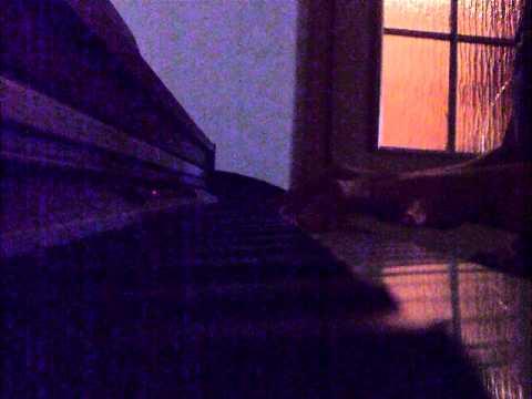 Alice Nine - Tsubasa piano cover