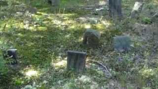 Hopkins Cemetery At Patuxent Wildlife Refuge (UNCUT HD)