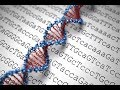 Human genome's frontier may hold keys to new drugs