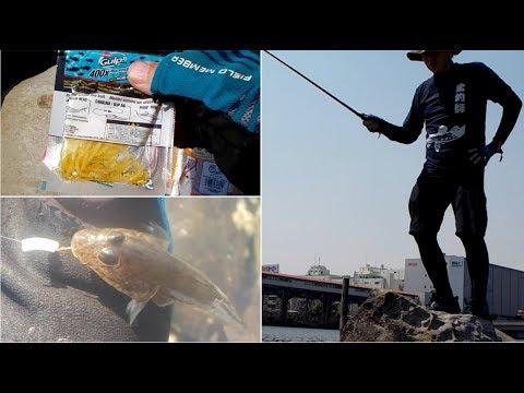 ワームでハゼ釣りは面白い!!三鷹の鯊釣師が行く 大井ふ頭中央海浜公園