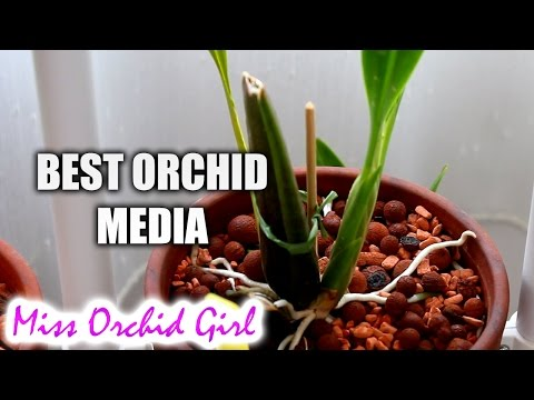 Best long lasting Orchid media so far - How to not repot too often