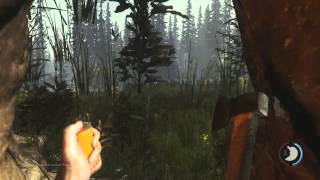 How to Survive in The Forest Game, Tips, Tricks and Cheats