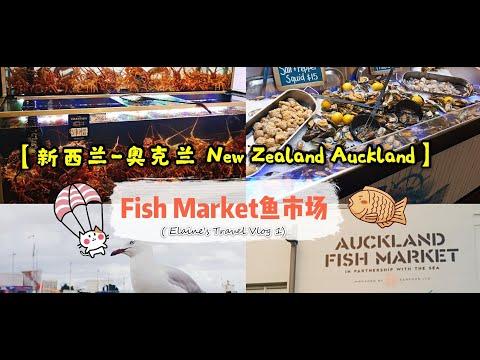 【紐西兰/新西兰-奥克兰 New Zealand Auckland】Fish Market鱼市场 🐟 ~ ( Elaine's Travel Vlog 1)