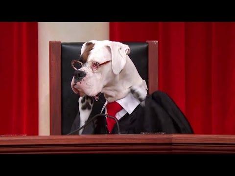 Heffernan v. City of Paterson: Oral Argument - January 19, 2016