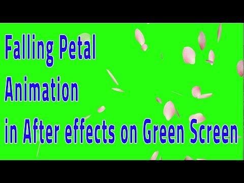 Falling Petal Animation