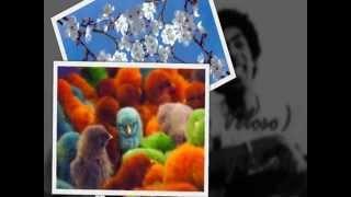 Superbacana || Caetano Veloso & Gilberto Gil