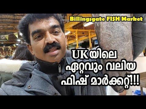 UK യിലെ ഏറ്റവും വലിയ ഫിഷ്  മാര്ക്കറ്റ് കാണാം / Billingsgate FISH MARKET LONDON