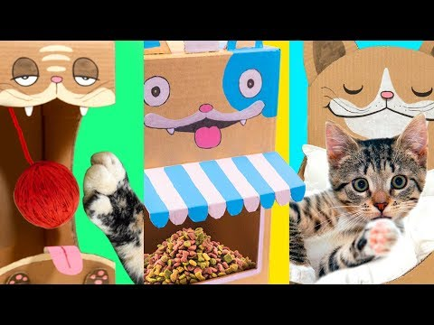 5 DIY Cat Projects from Cardboard | Cute & Easy Ideas for Pets