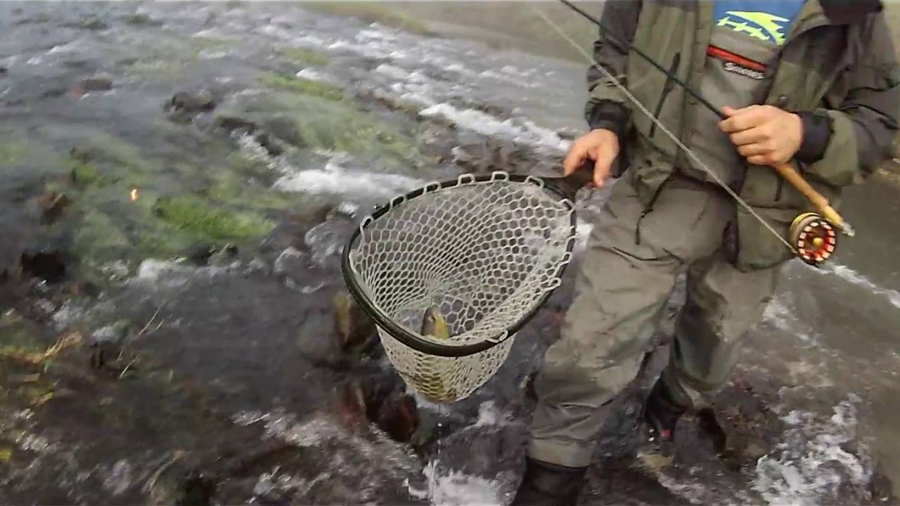 Paint creek iowa driftless youtube for Iowa out of state fishing license