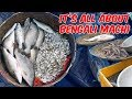 Kolkata Fish Market With Price | Live Auction Trading Of Fish | VLOG² 25