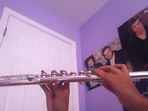 Hey Everybody!  5 Seconds of Summer Flute