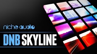 DNB Skyline Maschine Expansion Ableton Live Pack - From Niche Audio