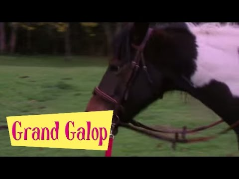 Grand Galop 122 - Le Journal intime de Lisa | HD | Épisode Complet