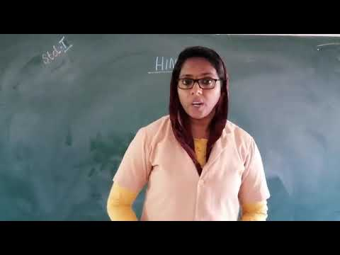 RPEES JUNIOR SCHOOL ONLINE CLASS STD 1 SAINABA TEACHER HINDI 24/11/2020