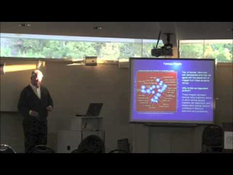 Isolabella Lecture: The New Field Theory in Social Psychology