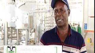 Milk processing plant to boost farmers in Meru - part 2