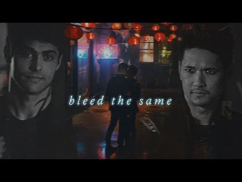 • bleed the same (magnus & alec) malec