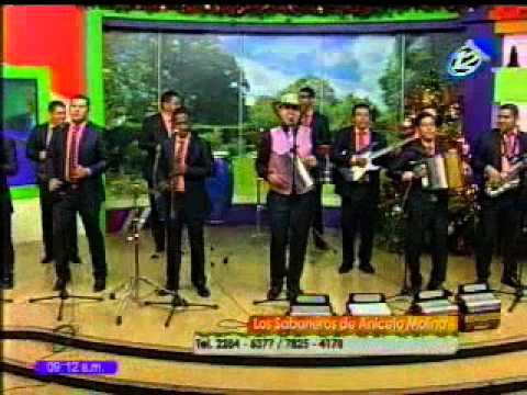 Vamos a bailar al ritmo de la música con Los Sabaneros de Aniceto Molina