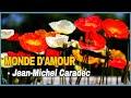 Capture de la vidéo Jean-Michel Caradec - Monde D'amour (1972)