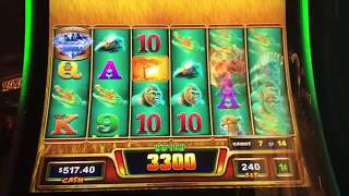 $50 BETS ON RAGING RHINO SLOT MACHINE!  DON'T DO THIS!!!