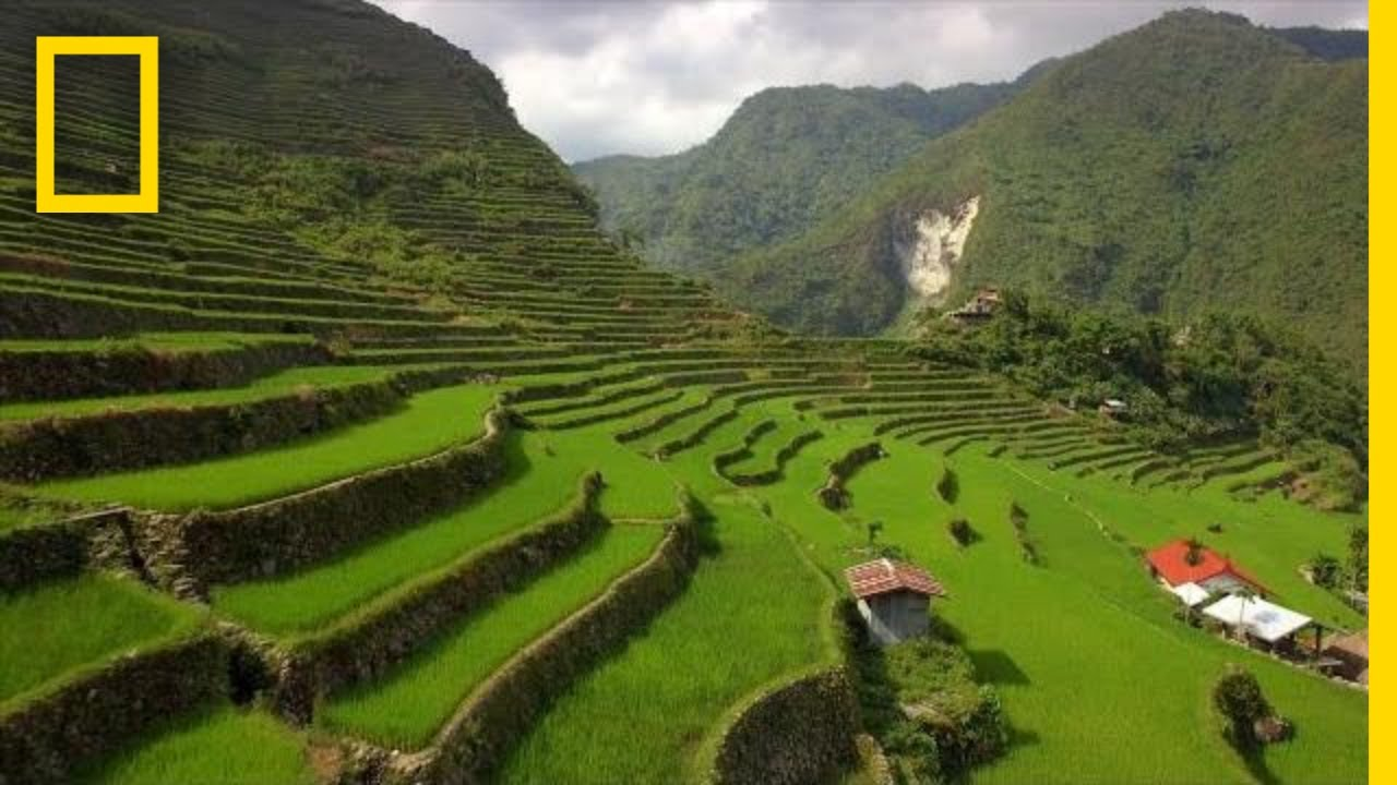 Soar Over the Lush Rice Terraces of the Philippines | National Geographic