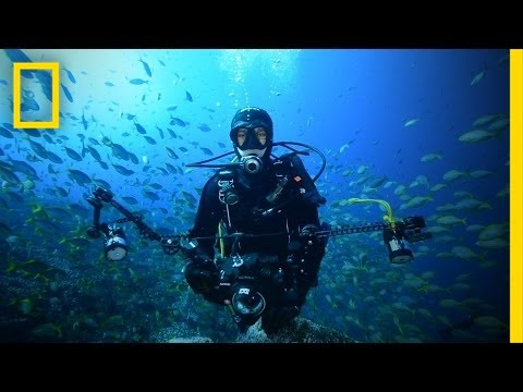 Join Us Online for National Geographic Explorers Week (June 13-17)   National Geographic