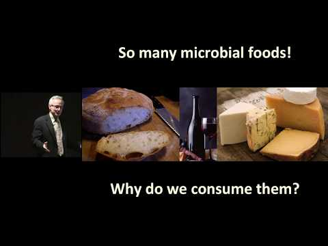 Microbial Life: A Universe at the Edge of Sight on YouTube