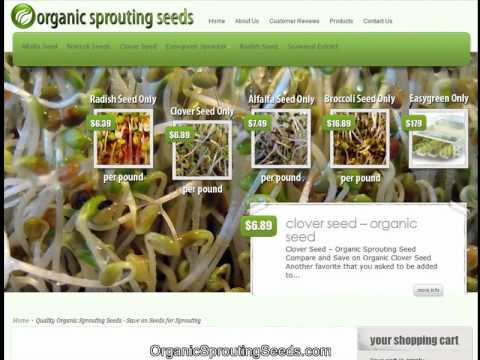Buy Organic Sprouting Seeds Wholesale - Save on Bulk Sprouting Seeds