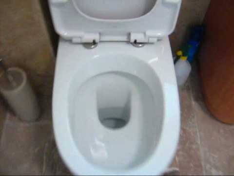 how to fix a leaking caroma dual flush toilet cistern