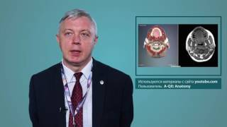 Комплексный клинико-рентгенологических подход в лечении органов головы и шеи