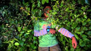 Сериал Disney - Подопытные - Сезон 2 Серия 15 - Бионические тайны. Часть 2