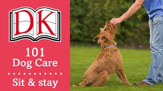 101 Dog Care: How To Teach A Dog To Sit & Stay