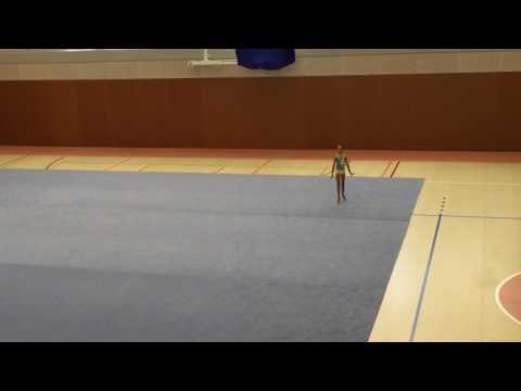 Top gymnaste