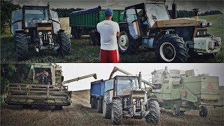 Żniwa 2018 - GR Mokrzyn [ VLOG #8 ] ✔ Jęczmień oraz pszenica na nasiona [ MafiaSolecTeam ]