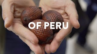 EAT IN LIMA | Discover the Taste of Peru