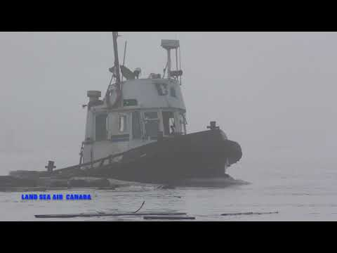 PACIFIC tugboat The fog tow 2017