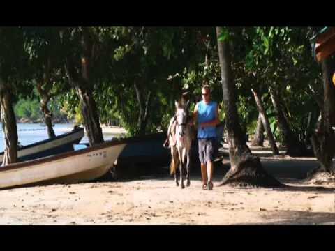 Robert Britton Promotion Divina Providencia y Santa Catalina Isla 1