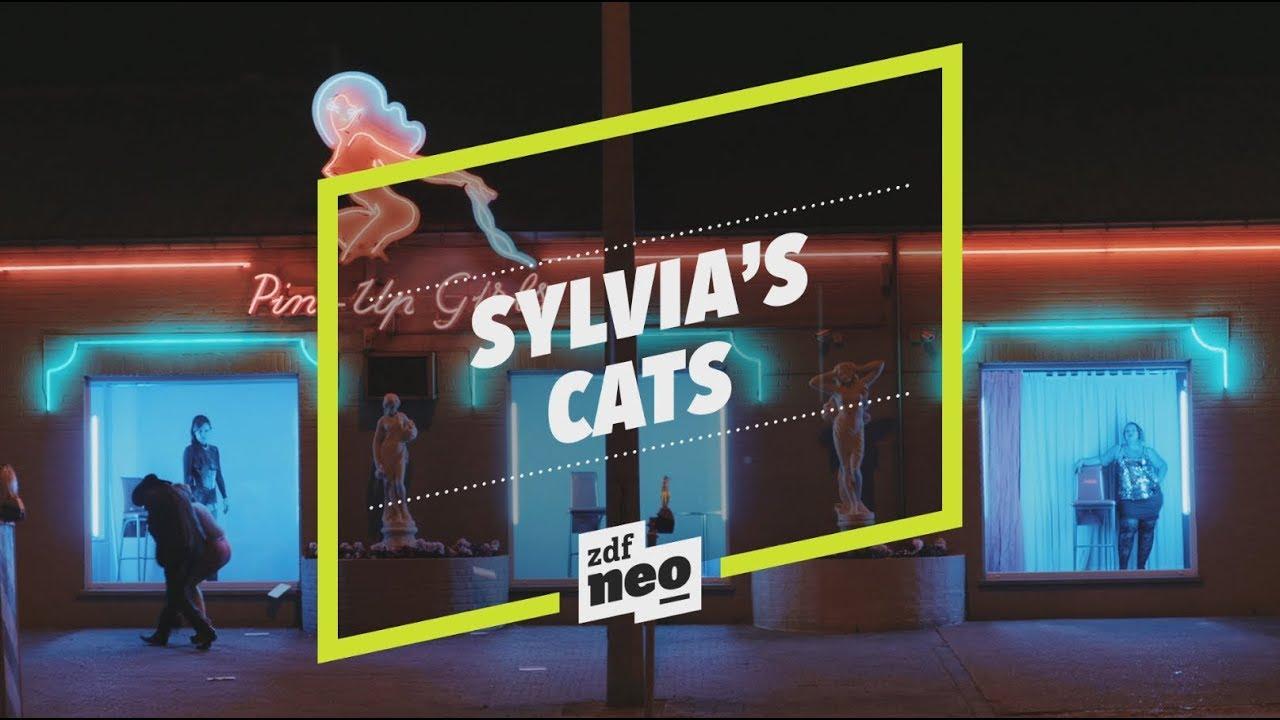 Sylvia Cats