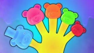 gelée ours famille doigt | comptines | enfants chanson