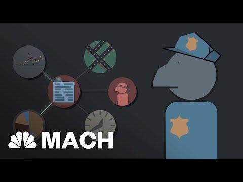 Algorithm Helping Police Predict Crime | Mach | NBC News