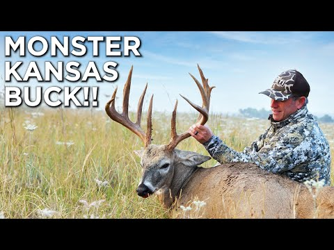 GIANT Kansas Whitetail!! | Muzzleloader Deer Hunting
