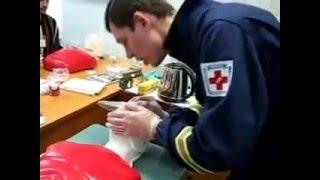 видео Искусственная вентиляция легких