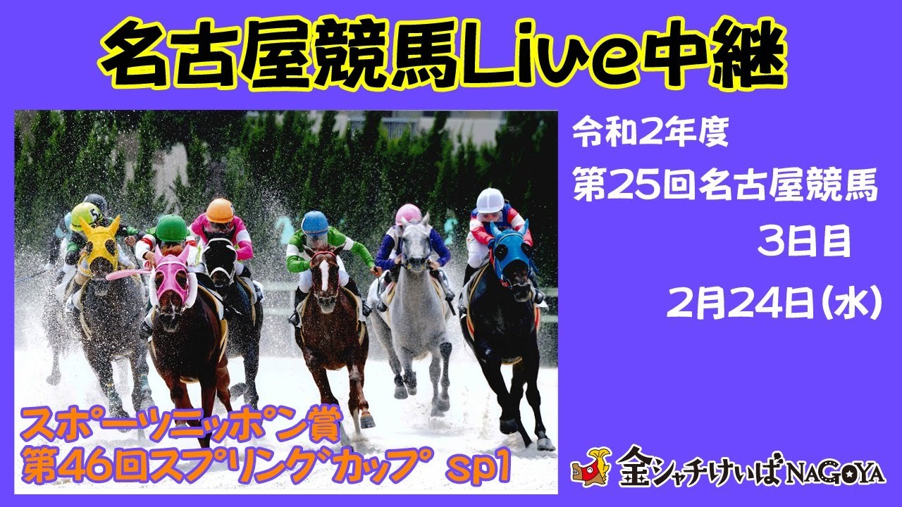 競馬 ライブ 姫路