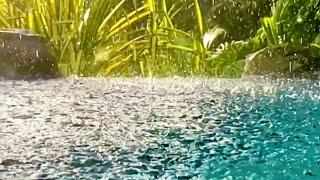 Thunder Sounds with Rain on Pond Sleep Study Focus