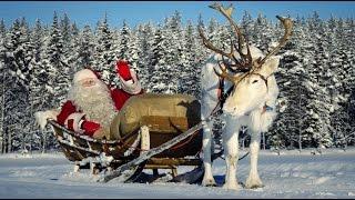 Père Noël et rennes: interview du Papa Noël pour les familles à Pello Laponie Finlande Rovaniemi