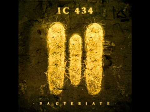 IC 434-The Reaping