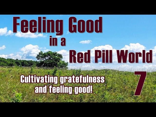 Feeling Good in a Red Pill World #7 Gratefulness