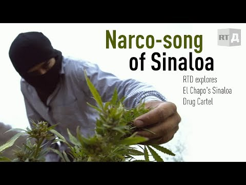 Narco-song of Sinaloa: El Chapo's Drug Cartel (RT Documentar