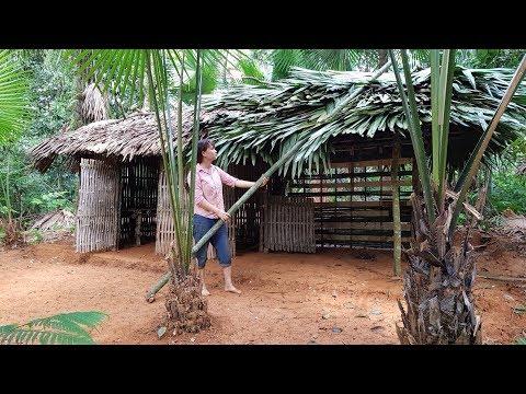 Primitive Technology: Building a hut for cooking (kitchen-hut) Primitive-Hut